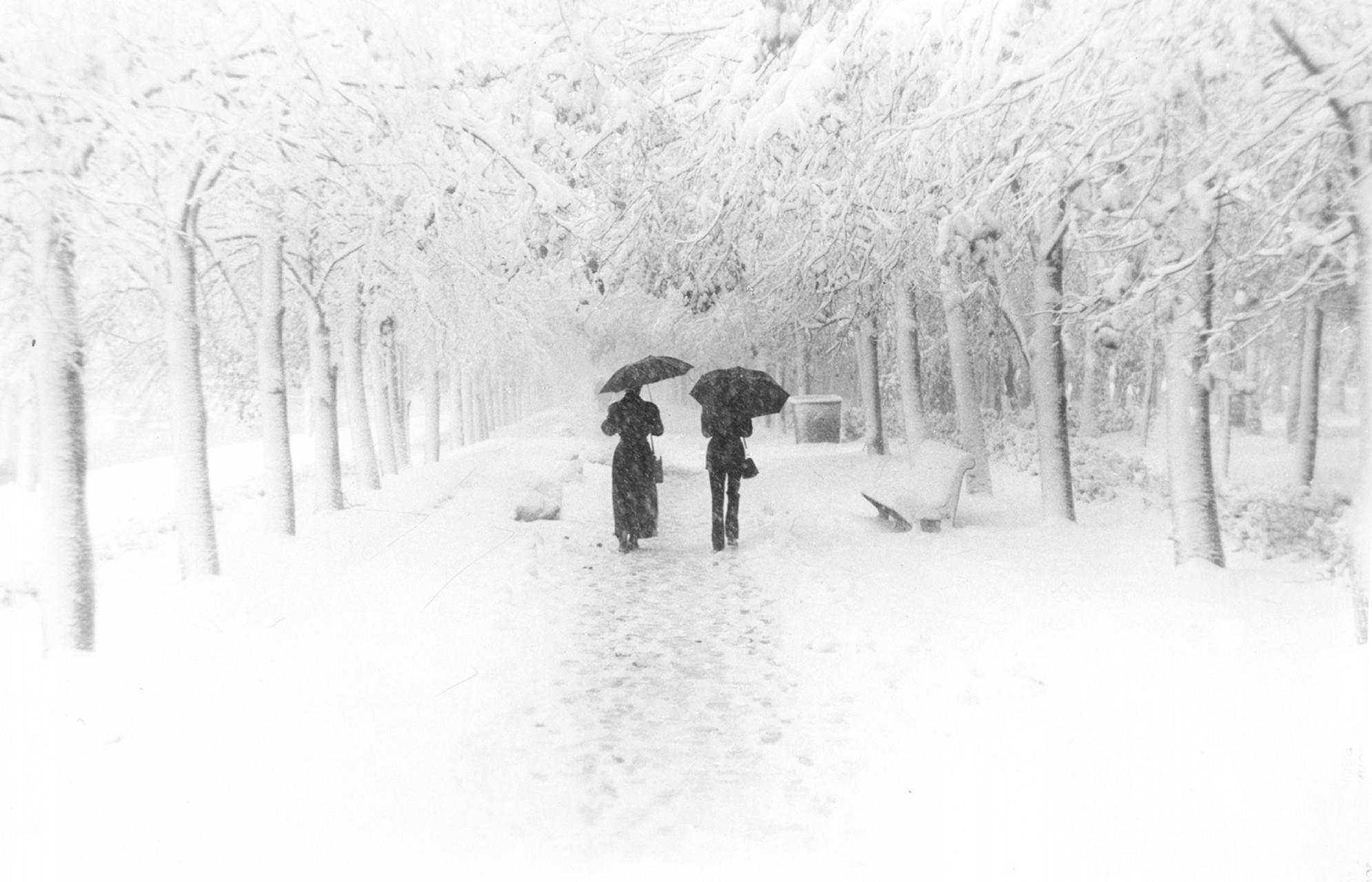 «Теплый снег», Анатолий Воинов