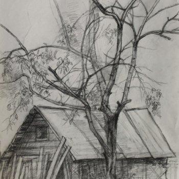 «Дерево и сарай», Рузиля Набиуллина