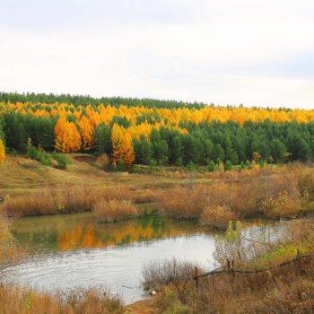 «Осень прошлась, красок не пожалела», Раиль Мусин