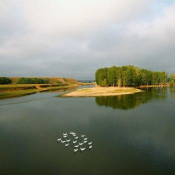 «Прогулка. Река Зилим у деревни Таш-Асты», Юрий Пичугин