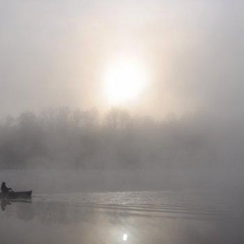 «Утро. Туман», Юрий Пичугин