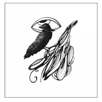 «Всевидящий ворон», Светлана Степанова (Мухаметгареева)